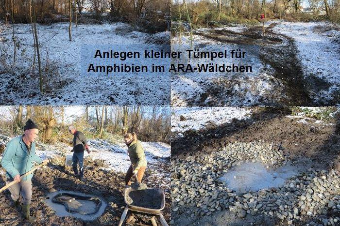Amphibientuempel-2015